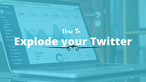 Traffic Report 1 – How I Exploded My Twitter Following In 24 Hours And How You Can Too